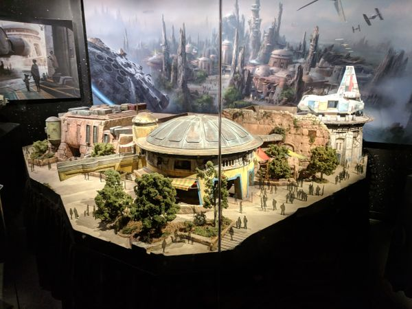 Episode 10 - Galaxy's Edge Theme, Bedbugs, Mystery Chicken Feathers